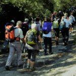 Des randonnées pour découvrir les paysages de Saint-Vincent